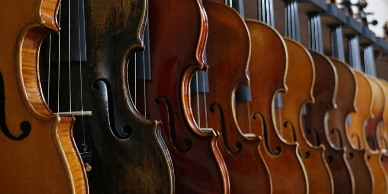 Row of violins