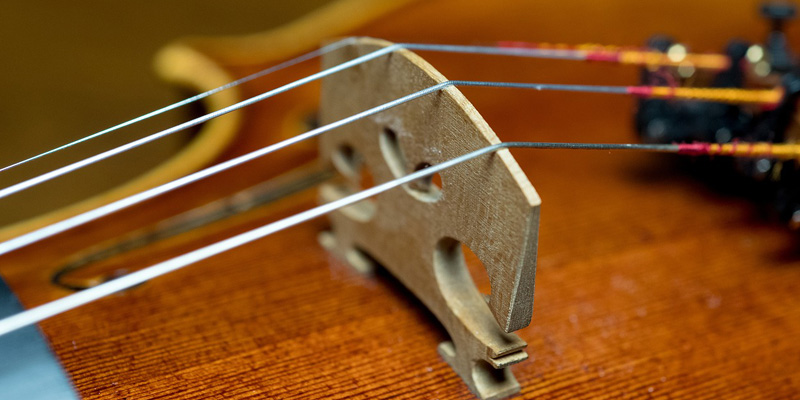 Violin strings close up
