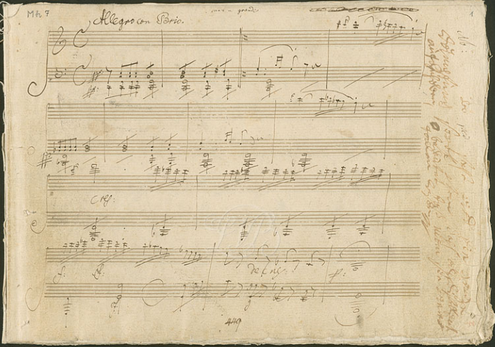 Ornamentation in Beethoven—A New Perspective