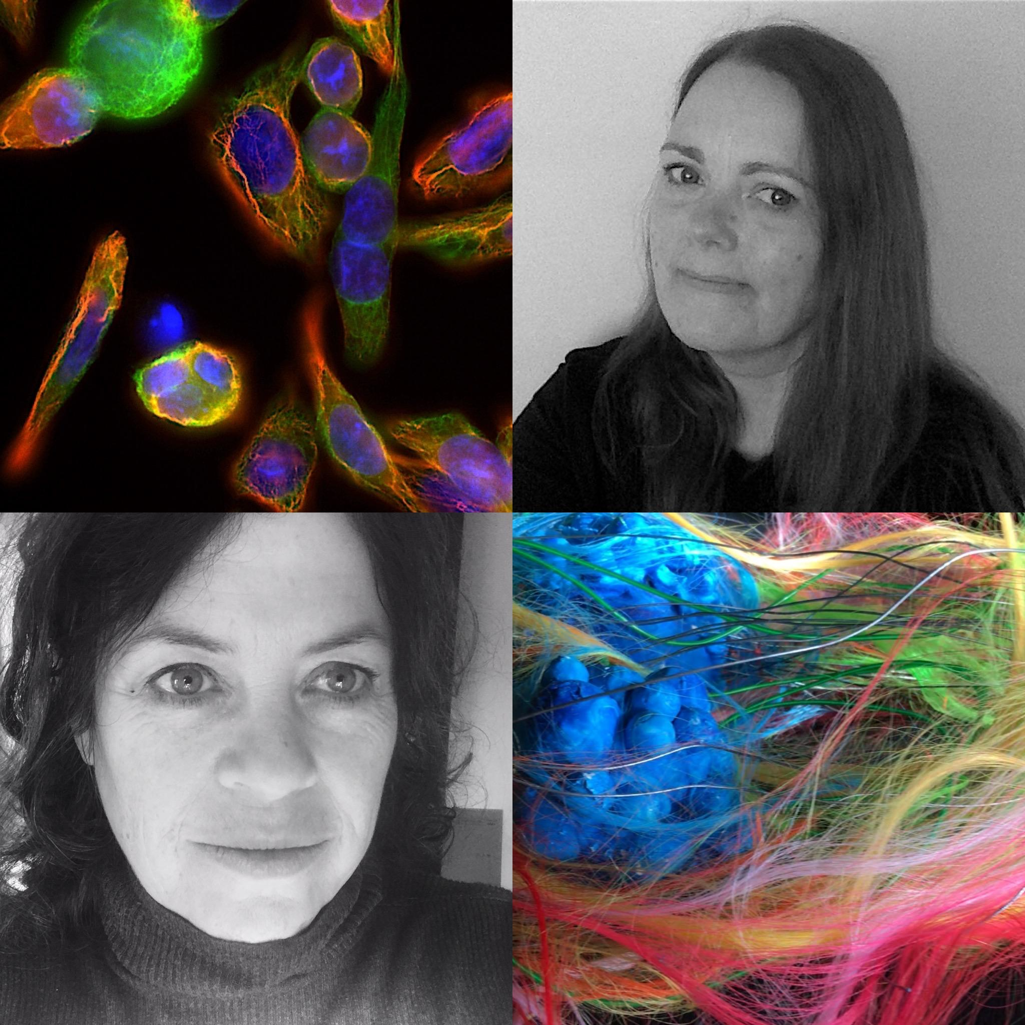 Collage of both project investigators and cell images